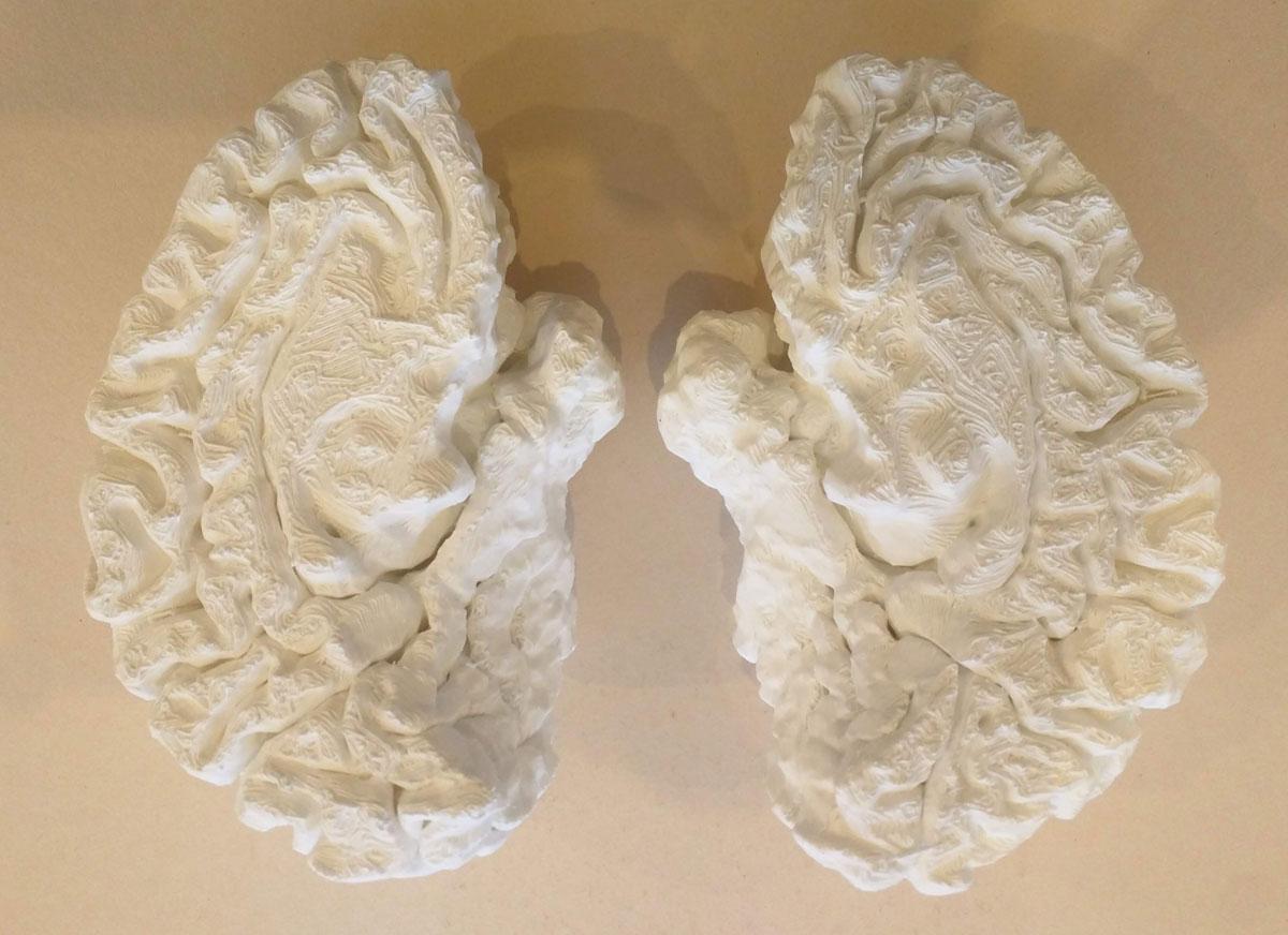 3D Printed Prop - Brain
